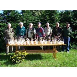 3-day Poland Roe Deer Hunt For Two Hunters