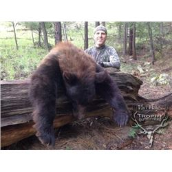 5-day Arizona or New Mexico Black Bear Hunt for One Hunter