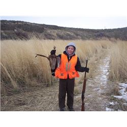 5 BIRD PHEASANT SHOOT – GUIDE AND DOG PROVIDED
