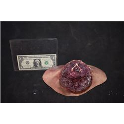 ZZ-CLEARANCE SEVERED SILICONE HEAD STUMP 2