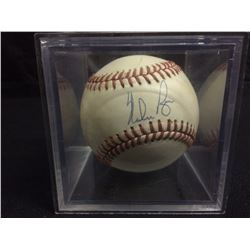 HAND SIGNED NOLAN RYAN OFFICIAL AMERICAN LEAGUE BASEBALL IN PLASTIC DISPLAY CASE