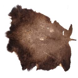 Tanned Montana Buffalo Hide Rug