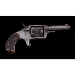 Hopkins Allen GWT&R .32 Revolver Mountain Eagle