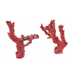 Antique Chinese Red Branch Coral Natural Tree