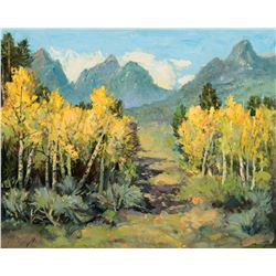 Mountains with Aspens