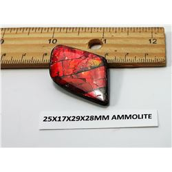 RED FIRE AMMOLITE GEMSTONE