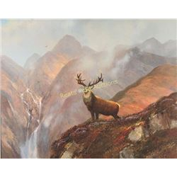 Michael Coleman Elk Print on Canvas Board
