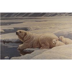 "Robert Bateman, Polar Bear & Cubs, signed print, 16""x 25"", framed, 1978, 27/950"