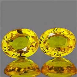 Natural Canary Yellow Sapphire Pair
