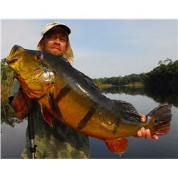 Peacock bass fishing trip for one angler in the Amazon basin in Brazil (7 days)