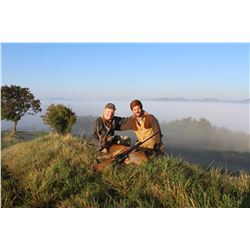 Roe deer hunt for 2 hunters in Umbria, Italy (3 days)