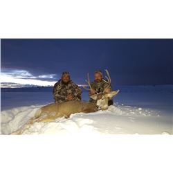 5 - DAY MULE DEER HUNT IN NEW MEXICO FOR 1 HUNTER