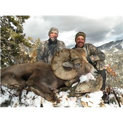 TAOS PUEBLO ROCKY MOUNTAIN BIGHORN SHEEP PERMIT- MOUNTAIN HUNTq