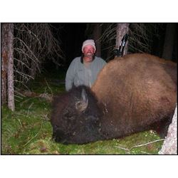 8 - DAY BISON HUNT IN BRITISH COLUMBIA WITH SIKANNI RIVER OUTFITTERS
