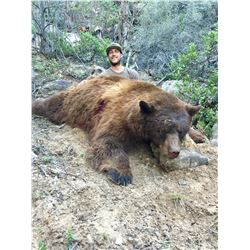 2018 Utah San Juan Multi Season Bear Conservation Permit