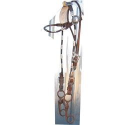 silver mounted headstall