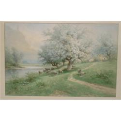 "WEBER, Carl, 1850-1921.  ""Grazing Sheep under the Apple Blossoms""...."