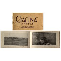 Galena lead Mining Informational Booklet