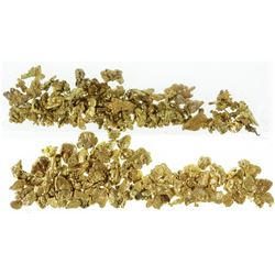 American River Placer Gold Fines