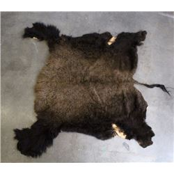 Large Montana Wild Buffalo Fur Hide