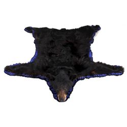 Large Montana Black Bear Rug Mount
