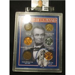 "Special Cased Set ""137 Years of U.S. Pennies"" contains six different varieties of U.S. Cents."