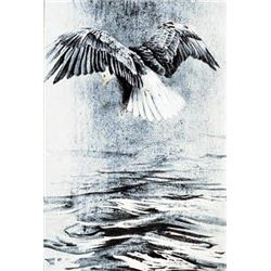 Bald Eagle Studies #2 - Flying by Robert Bateman