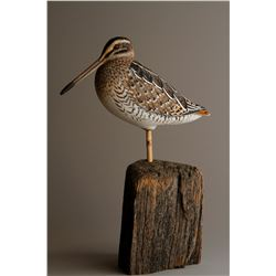 """Wilson's Snipe"" by Andy White"