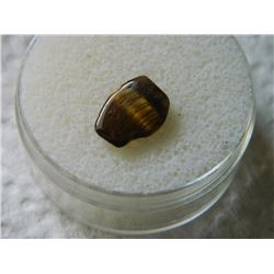 POLISHED FREE FORM GEMSTONE - TIGERS EYE