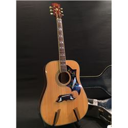 DILLION DV-20S ACOUSTIC GUITAR, WITH BIRD DESIGN ON PICK GUARD, COMES WITH HARD SHELL CASE
