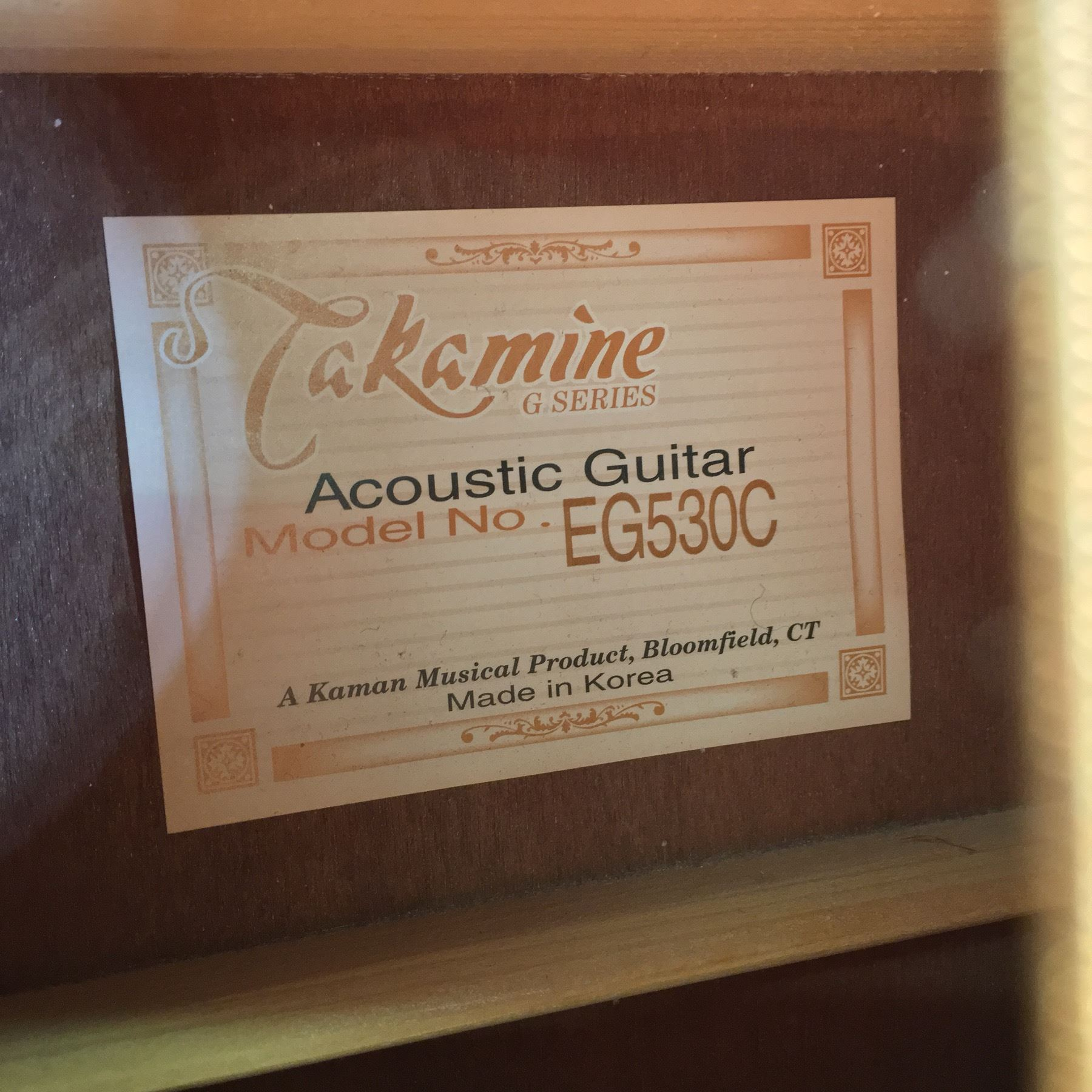 Information on a guitar - Takamine