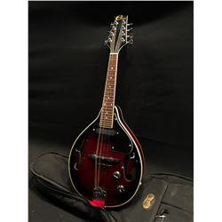 ELECA MODEL EMA-3 ELECTRIC MANDOLIN, WITH SINGLE COIL PICKUP, VOLUME AND TONE CONTROL, COMES WITH