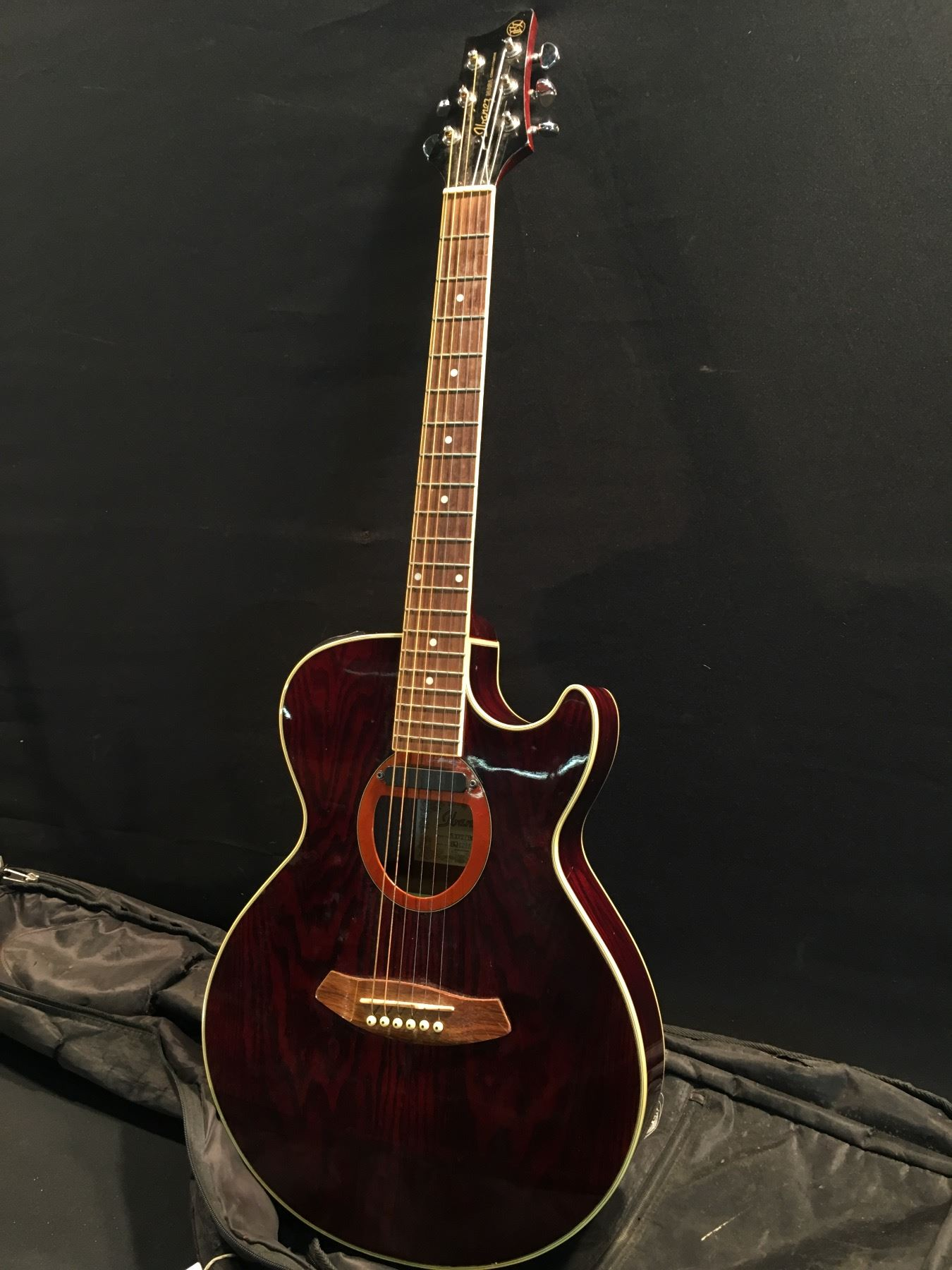 Ibanez Small Body Acoustic Electric Guitar Not Lossing Wiring