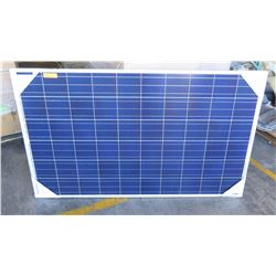 Qty 6 New Solar PV Panels: Renesolar JC255M-24/Bb, Clear
