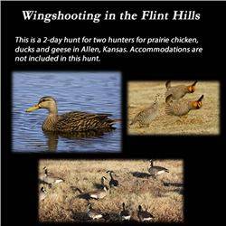 Wingshooting in the Flint Hills