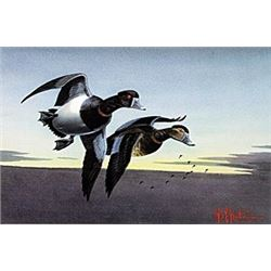 "Print ""Ring Necks""  Les C. Kouba"