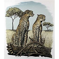 "Lithograph ""Cheetahs""  Alan E. Carman"