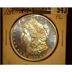 1880 S Morgan Silver Dollar, Deep Cameo Prooflike.