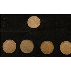 1907 Indian Head Cent; 1913 D Good, 16 D Good, 17 P Good, & 1918 P AU Lincoln Cents.