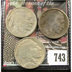 1918 F Dark, 1918 D G &1918 S G Buffalo Nickels.