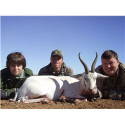 JP Big Game Safaris - South Africa