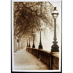 "Fine Art Print ""Morning Walk"" by Michael Trevillion"