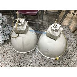 Pair of Hanging Industrial Lights