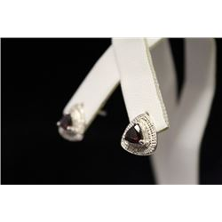 Exquisite Garnet & Diamond Earrings (36M)