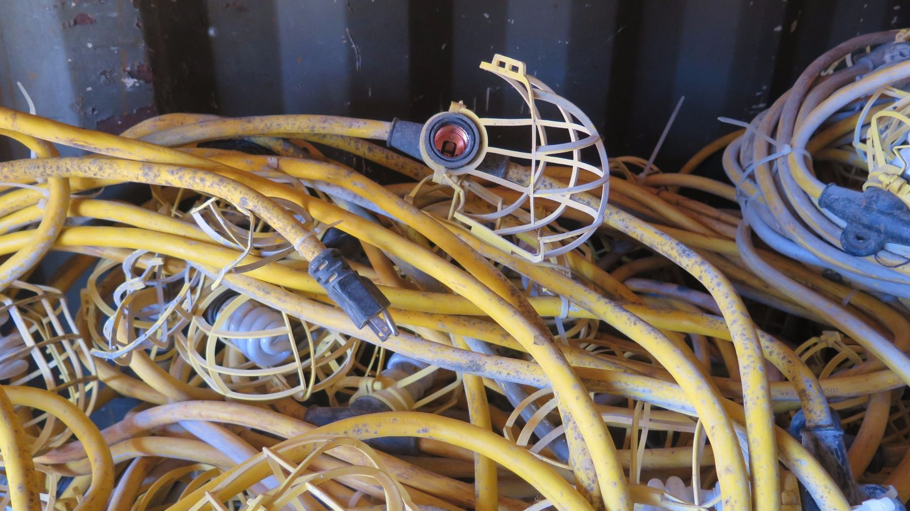 String Utility Lights : Large Lot Plastic-Cage Utility String Lights - Yellow Cabling
