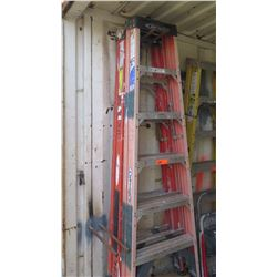 Qty 2 Werner Tall Aluminum Ladders