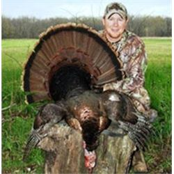 3 Day Turkey Hunt for Two Hunters - South East Iowa
