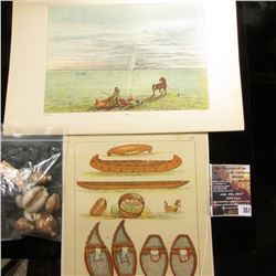 351.Group of (9) various size pieces of Cowrie Shell Money; & (3) various Indian related Plate Print