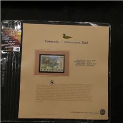508.1996 Colorado-Cinnamon Teal $5.00 Duck Stamp, Pristine, mint condition in original folio as issu