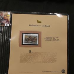510.1996 Delaware-Gadwall $6.00 Duck Stamp, Pristine, mint condition in original folio as issued by